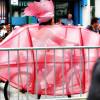Mermaid Parade | Photography